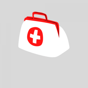 Medical Bags, Packs & Pouches